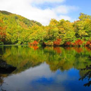 小谷・鎌池の紅葉