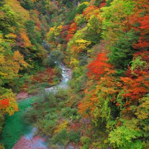 高瀬渓谷紅葉始まる