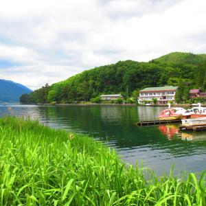 木崎湖の水連と中綱湖の静寂