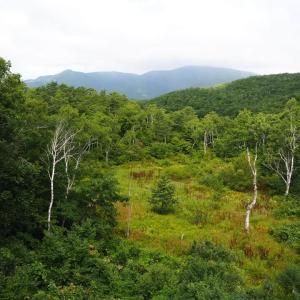 山は秋「志賀高原一沼」