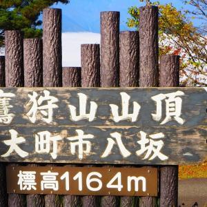鷹狩山に雲海が!!!