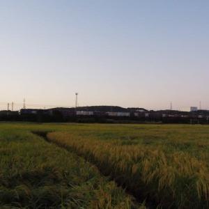 2019年10月10日,今朝の山陽線 EF210