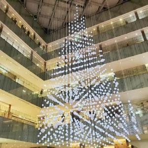 2019年11月21日,クリスマスツリー