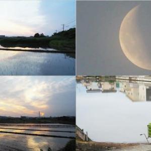 2020年6月15日,今朝の風景 夜明け,月,日の出など