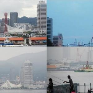2020年7月5日,昨夕,今朝の風景 神戸港