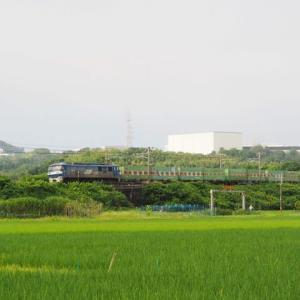 2020年7月30日,山陽線 56レ EF210-140+福山通運
