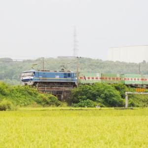 2020年9月16日,山陽線 56レ EF210-311+福山通運