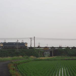 2021年7月9日 山陽線 EF65-1000特急色+レールチキ