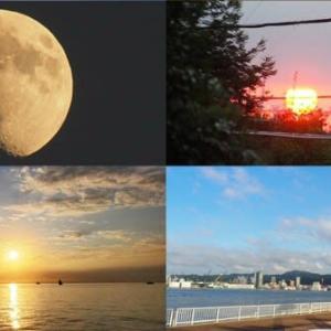 昨夕,今朝の風景