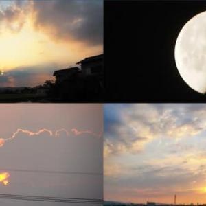 2021年7月30日 昨夕,今朝の風景 EF65-1000特急色+レールチキ,3091レ DE10-1164,サンライズ出雲,56レ 福山通運