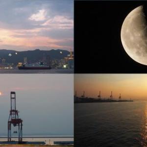 2021年8月1日 昨夕,今朝の風景