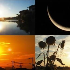 2021年8月6日 昨夕,今朝の風景  3091レ DE10-1164,サンライズ出雲,56レ 福山通運