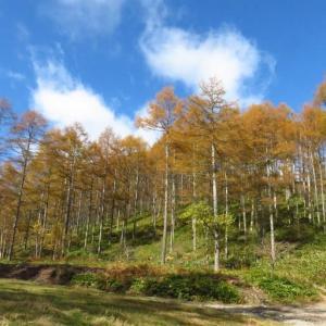 車山高原 姫木平ハイキングコース