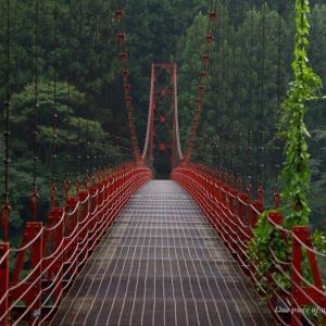 緑に囲まれた真っ赤な蔵王橋
