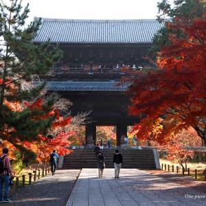 燃える南禅寺の紅葉
