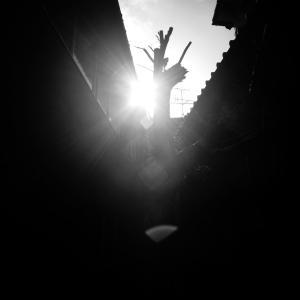 光と影 2020 #14