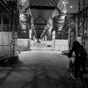 夕暮れ古町 #05
