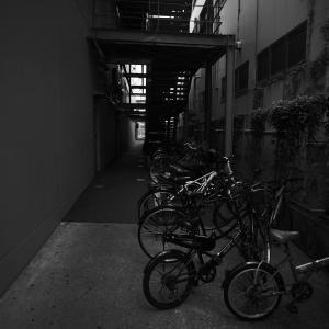 秋の入り口に撮った写真 #04 20201001