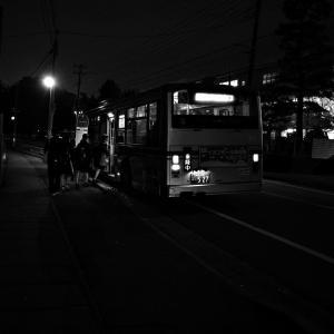 バス停 20201116