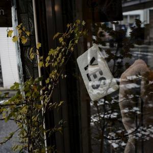 気まぐれな光、気まぐれな雨に、古町界隈で本日オーバーワーク #05 20201121