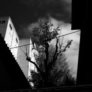 気まぐれな光、気まぐれな雨に、古町界隈で本日オーバーワーク #07 20201121
