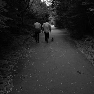 散歩道に人が戻っている 20210917