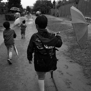雨の休日、水たまりを得意げに歩く! 20210918