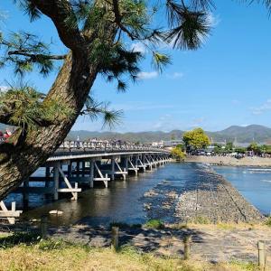京都に行くのなら嵯峨釈迦堂清凉寺からの愛宕念仏寺方面ルートが景観をかなり楽しめます