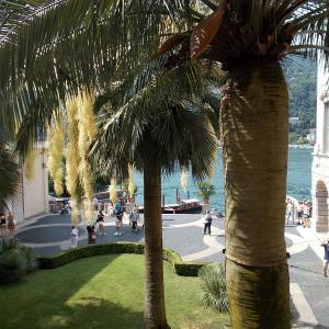 イタリア、マッジョーレ湖のベッラ島の宮殿の庭園へ向かう。