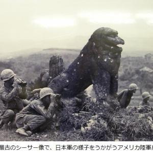 世界自然遺産は世界歴史遺産でもある?沖縄中部・南部が除かれた理由