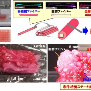 人工肉がここまできた!「3Dプリント」で本物を再現!