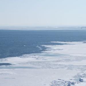 流氷の能取岬 2011年2月 6