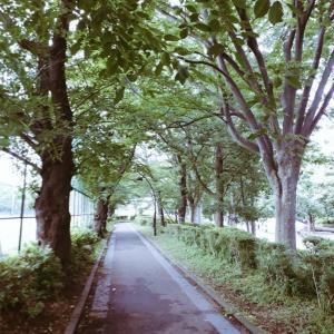 7月30日(木) 午前5時の冒険