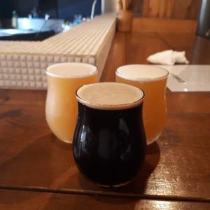 8月2日(日) 映えビール