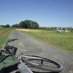 11月2日土曜日 あきるの~五日市サイクリング