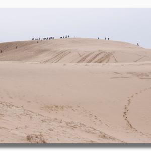 春先の鳥取砂丘