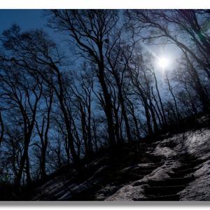 残雪多い大山夏山登山道と樹氷
