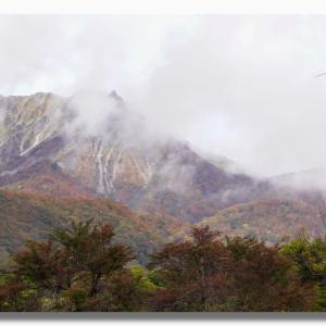 (10-2) 紅葉の大山