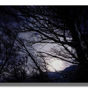 (1-3) モノトーンの大山山頂
