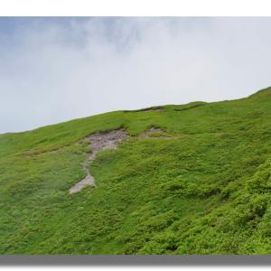 6-2 一ノ沢を登り、タケノコ岩のガレを下る