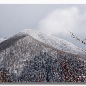 (2-3) 大山三ノ沢へ今年最初のスノーシュー