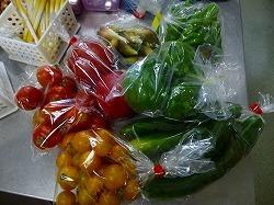農家の野菜スタンド