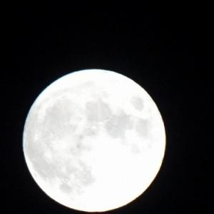 今日は、8月の満月