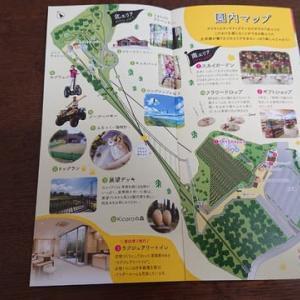 三島スカイウォーク(静岡県三島市)はとてもオススメ!