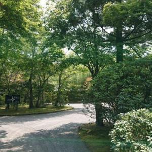 亀の井別荘に亀の井別荘にある天井桟敷(大分県 湯布院町)というカフェはとてもオススメ!