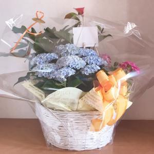 【今日は夏至!そして結婚記念日&明日は旦那さんの誕生日♪今年もお祝いのお花「花鉢」】