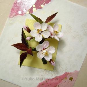 花寄せ 山桜
