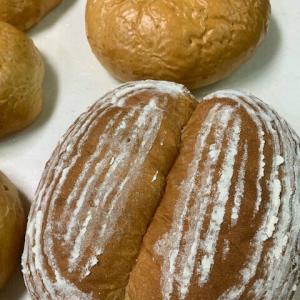 今日のパンたち