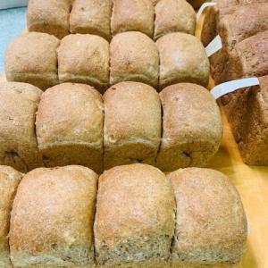 糖質カットパンと講演会
