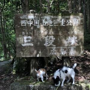三段峡 広島に桂林あり